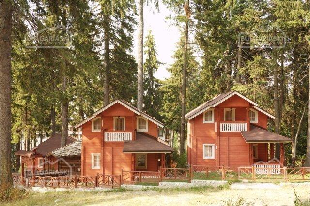Alpin Hotel5