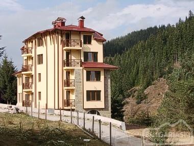 Vanalex Hotel1