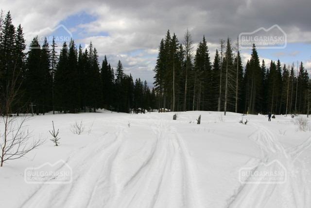 Kom Staţiune de schi4